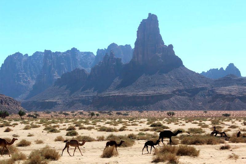 Местность Аравии
